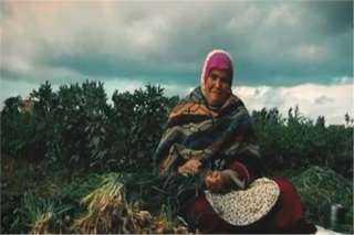 """""""أم كريم"""".. قصة كفاح سيدة ريفية وثقتها الكاميرا"""